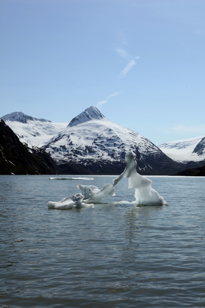 I thought this iceberg looked like a woman vacuuming.
